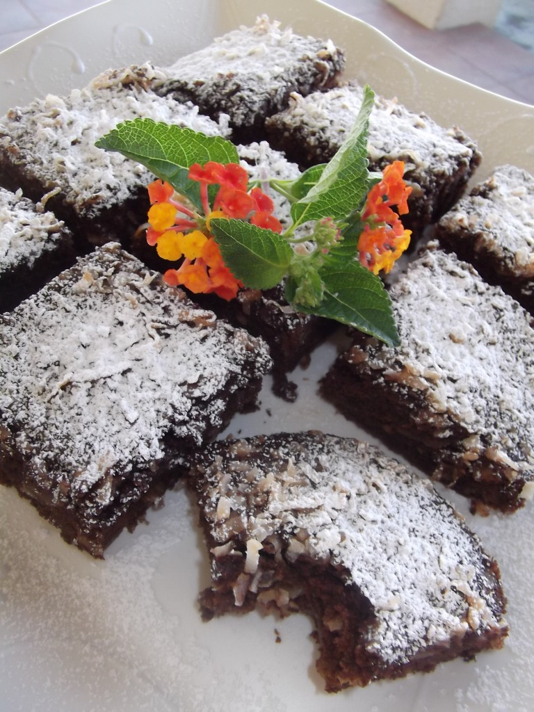 Dark Chocolate Squares – All Natural